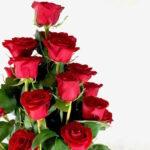 Arreglo de rosas Querétaro, Florerías en Querétaro, Flores a domicilio Querétaro