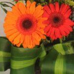 Arreglo de flores y rosas Querétaro, Florerías en Querétaro, Flores a domicilio Querétaro