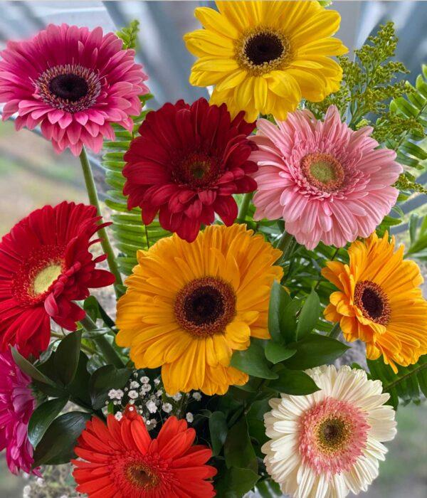 Flores del campo, Jarron con gerberas en Puebla, Caja de gerberas, florerías en Puebla