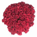 Besos apasionados - Ramo de 100 rosas