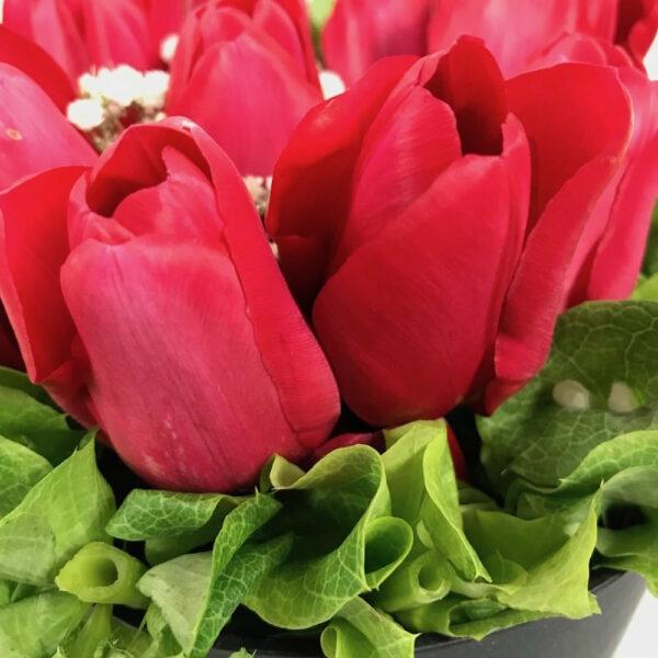 Lo escencial, Caja de tulipanes Querétaro, Florerías en Querétaro, Flores a domicilio Querétaro
