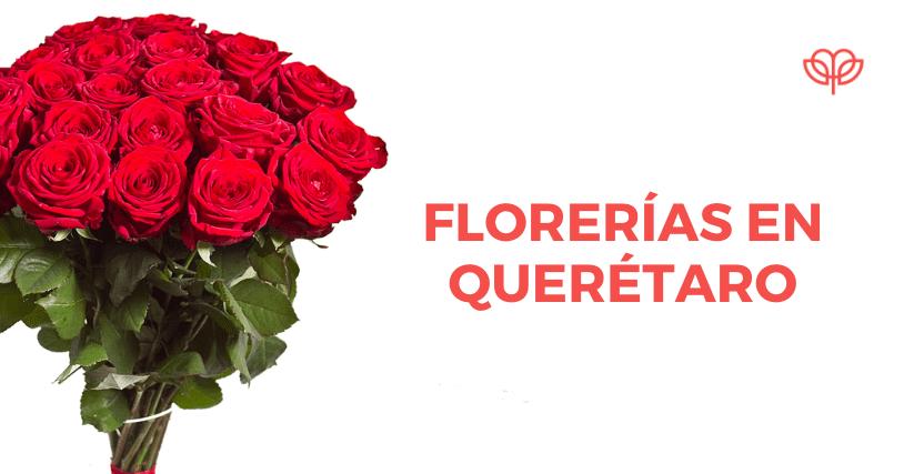 florerías en querétaro, arreglos de flores Querétaro, Florerías en Querétaro, Flores a domicilio Querétaro