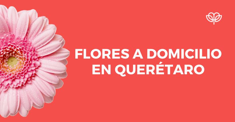 Arreglos florales, Arreglos florales en Querétaro, Florerías en Querétaro, Flores a domicilio Querétaro