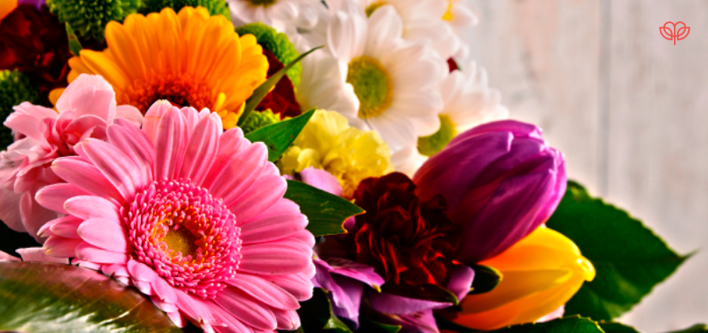 Arreglos Florales Para Cumpleaños En Querétaro