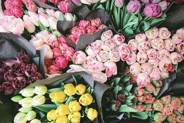 Enviar flores a domicilio en Tijuana - Florerías en Tijuana, Arreglos Florales Tijuana
