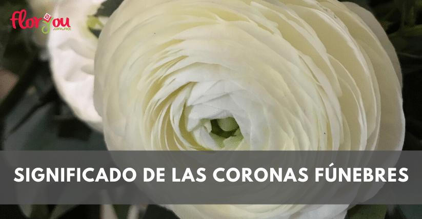 coronasfunebrestijuana