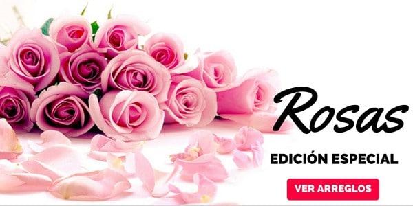 Especial Rosas - florerias en pachuca