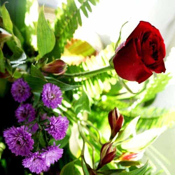 Flores 0061