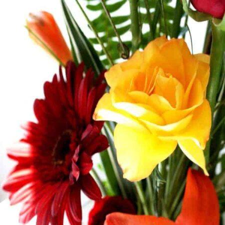Flores 0062