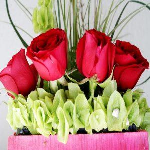 Flores 0064