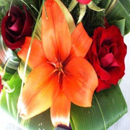 Flores 67
