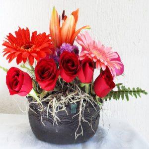Flores 0071