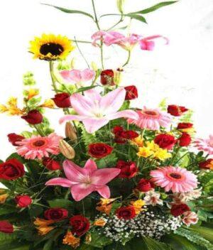 Arreglo de flores, florerías en Pachuca, Envío de flores a domicilio