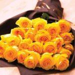 bouquet de rosas amarillas