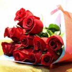 Doce poemas de amor Rojas   Chocolates