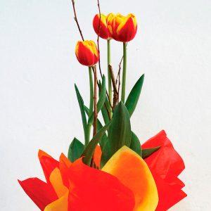 """Arreglos Florales -""""Tulipanes"""""""