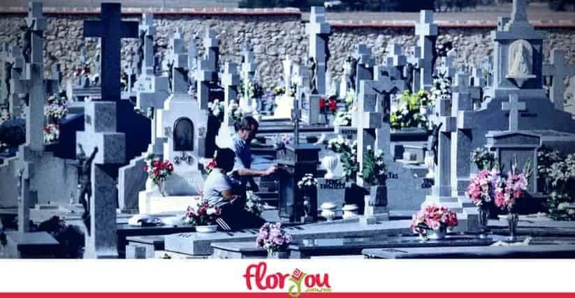 flores-dia-de-muertos