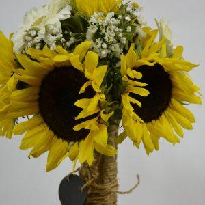 enviar flores pachuca girasoles
