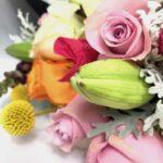Paulina - Especial La Casa de las Flores