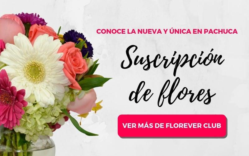 Edición especial rosas