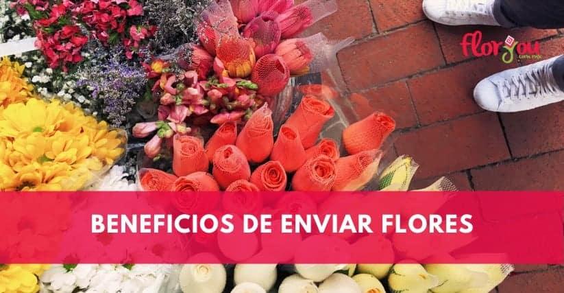 beneficios de enviar flores